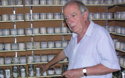 Convocada la segunda edición de los Premios César Gómez Campo a la conservación vegetal