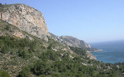 Las sierras Tejeda y Almijara,  un enclave botánico único en el sur de la península Ibérica