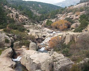 Situación de la Red Natura 2000 de España 30 años después de la Directiva de Hábitat